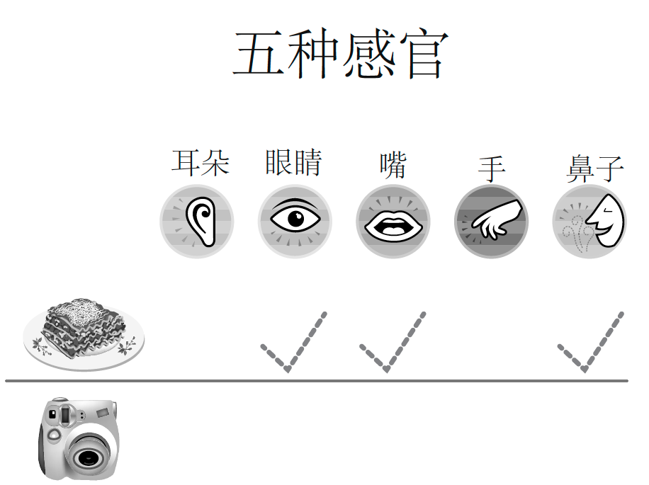 My Senses Worksheet (Kindergarten) – Creative Chinese