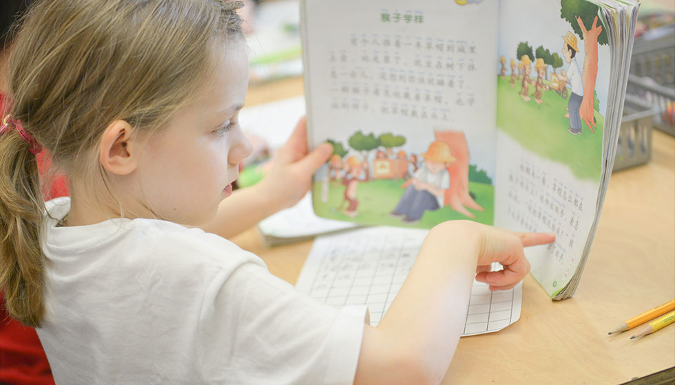 Chinese Homework Help